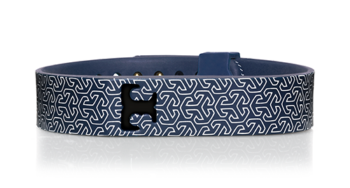 Fitbit Amp Tory Burch Accessories Collection