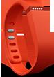 Fitbit Flex Image