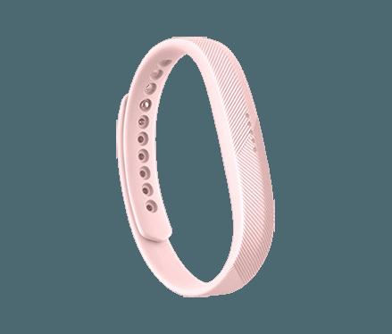 Fitbit Flex 2 Clic Band